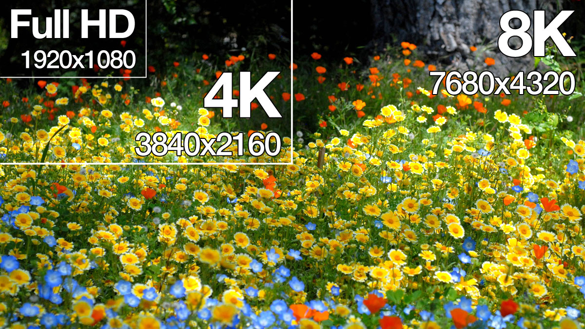 8K vs 4K vs Full HD